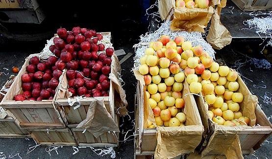لیست قیمت فروش پوشال میوه